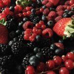 aspic ai frutti di bosco 1