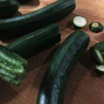 cannelloni zucchine 1