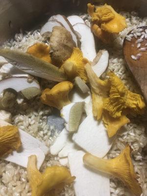 risotto ai funghi porcini finferli fichi d'india aggiunta funghi