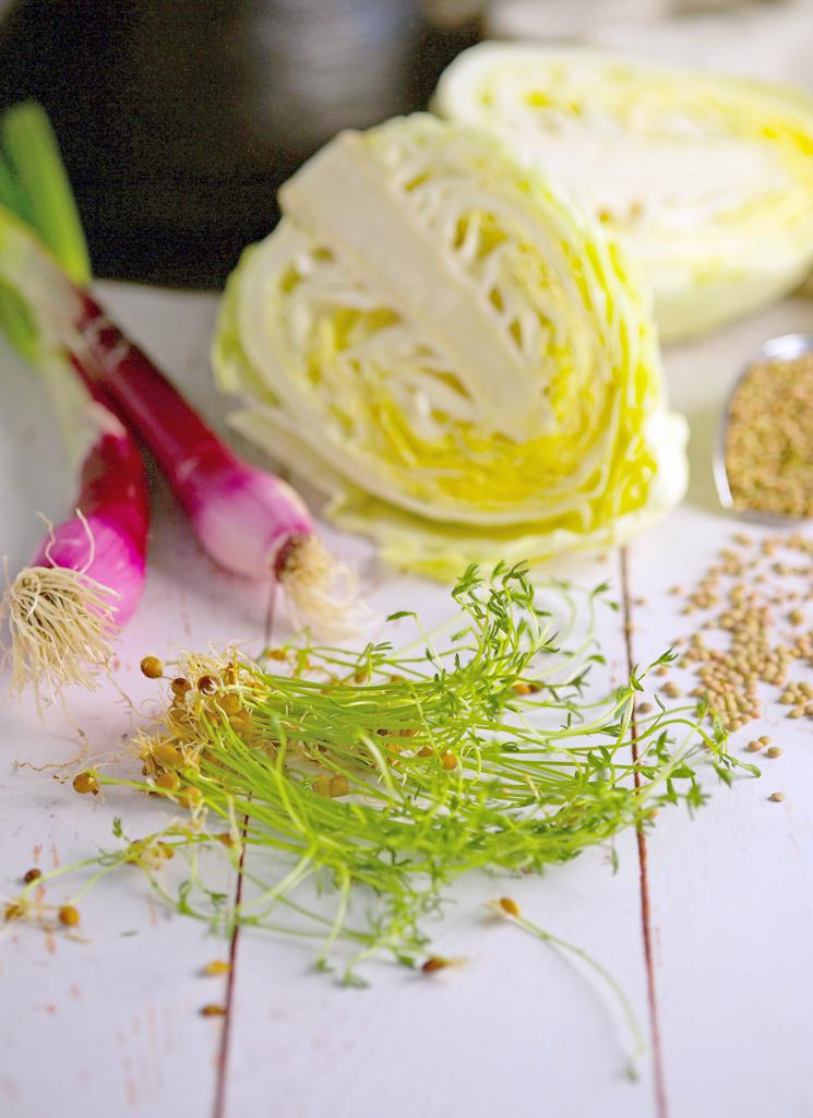 insalata di lenticchie e cavolo bianco ingredienti gourmama