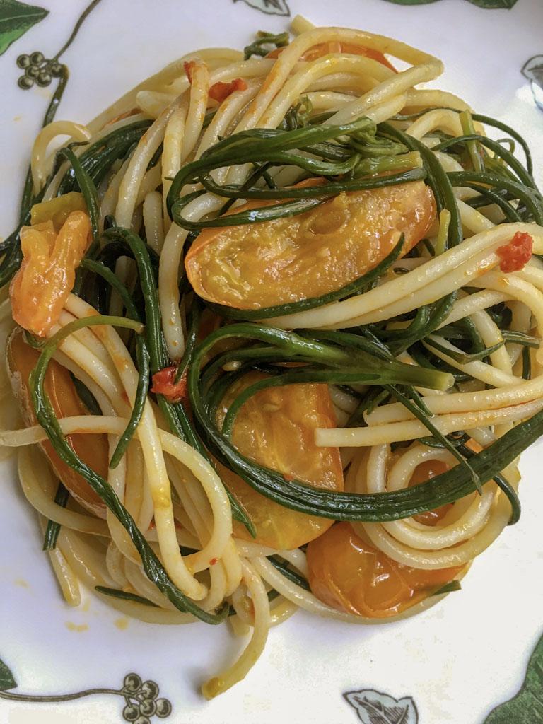 spaghetti senatore cappelli con agretti datterini gialli peperoncini macinati gourmama presentazione dettaglio